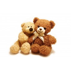 For My Teddy Bear